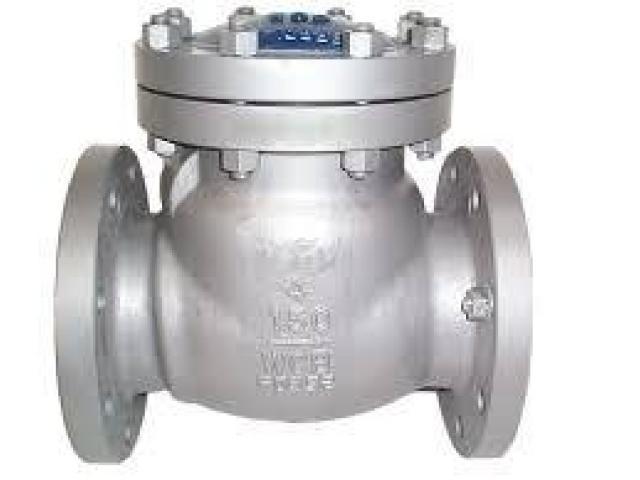 Generatore ad inverter professionale Kasei KS1000i portatile ideale per camper campeggio ambulanti